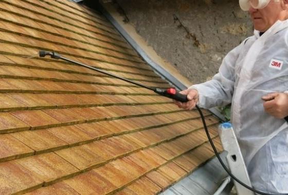 nettoyant toiture elegant pendant le traitement with nettoyant toiture amazing toitures. Black Bedroom Furniture Sets. Home Design Ideas