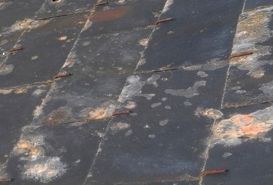 Ardoises naturelles et artificielles - Produit traitement toiture ...